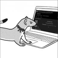 Cyberweasel89