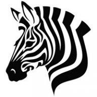 Tranquil Zebra
