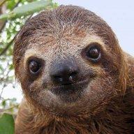 Stagnant_Sloth